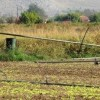 SORU ÖNERGESİ: Rodop ilinde, doğal afet sonucu zarar gören çiftçi arazilerinin ELGA memurları tarafından kayda geçirilmesi